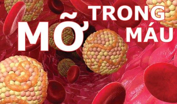 Ưu nhược điểm của các Bài thuốc trị máu nhiễm mỡ